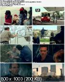 Arachnoquake (2012) HDTV XViD-OCW