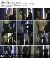 Боевое Кунг-Фу. Болевые точки (2011) DVDRip