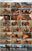Sara Jaymes, Shalina Devine - Passion Paradise - St. John 6 - AlSScan ( 2012/ HD 1080p)