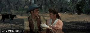 Сломанное копьё / Broken Lance (1954) DVD5 + DVDRip