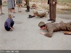 Александр Маленький (1981) DVD9 + DVD5 + DVDRip