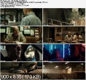 Piękno / Skoonheid (2011) PL.DVDRip.XviD-BiDA / Lektor PL