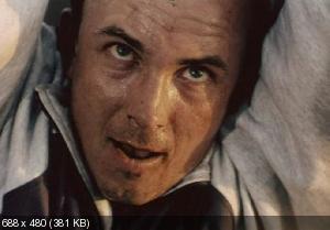 Мытарь (1997) DVD5 + DVDRip