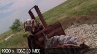 Битва за сокровища / Mongolian Death Worm (2010) BDRip 1080p + HDRip 1400/700 Mb