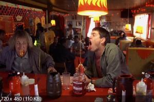 Тупой и еще тупее / Dumb & Dumber (1994) DVD9 + DVD5