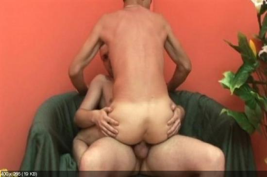 gayporno gonzo