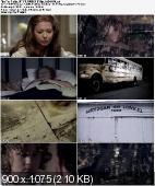 The Fields (2011) PLSUBBED.BRRip.XviD-BiDA / Napisy PL