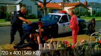 Американский Первоцвет / American Cowslip (2009) DVDRip