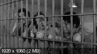 Вне закона / Down by Law (1986) BD Remux + BDRip 720p