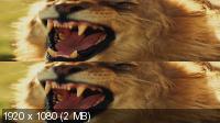 ������������ ���� ��������� 3D / Serengeti 3D (2011) BDRip 1080p