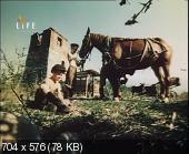 �������� ����� ������� (1989) DVB
