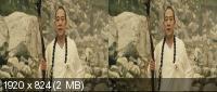Чародей и Белая змея 3D / The Sorcerer and the White Snake 3D (2011) BDRip 1080p