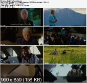 Wielki Rok / The Big Year (2012) PL.THEATRICAL.DVDRiP.XViD-PSiG | lektor PL