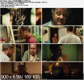 Dorwać gringo / Get The Gringo (2012) PL.BRRip.XviD-BiDA / Lektor PL