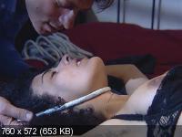 Записки Тинто Брасса: Сладкий сон / Sogno. Corti Circuiti Erotici (1999) BDRip-AVC