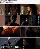 Midnight Son (2011) PL.SUBBED.DVDRip.XviD-MORS | NAPISY PL