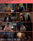 Two and a Half Men [S10E01] HDTV.XviD-AFG