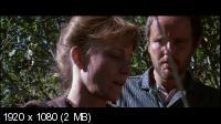 Имя ему Смерть / Pale Rider (1985) BD Remux + BDRip 1080p / 720p